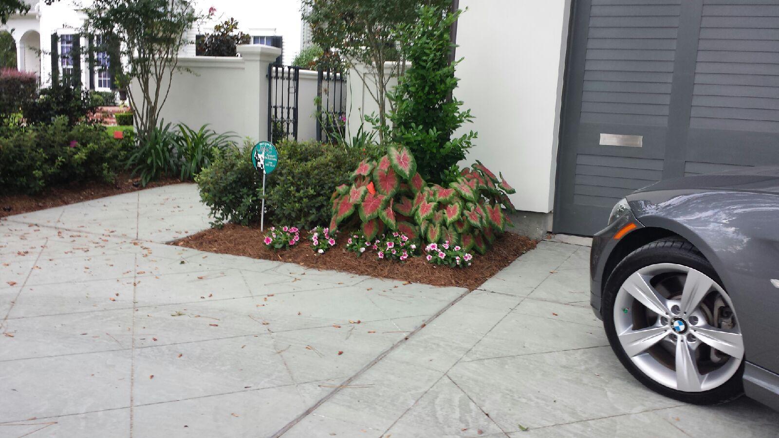 Poche-Residence_driveway_1