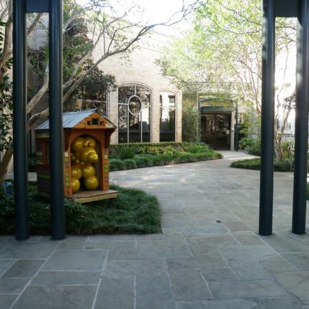 commercial landscape courtyard