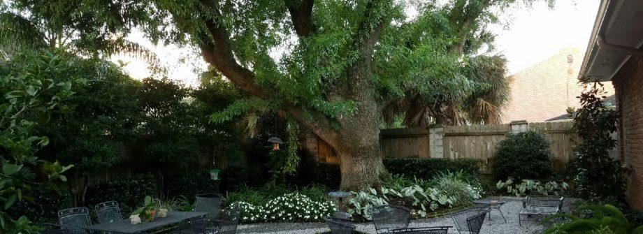 new orleans rear courtyard